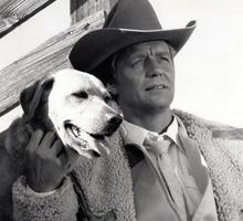 David Soul and Dog Dublin