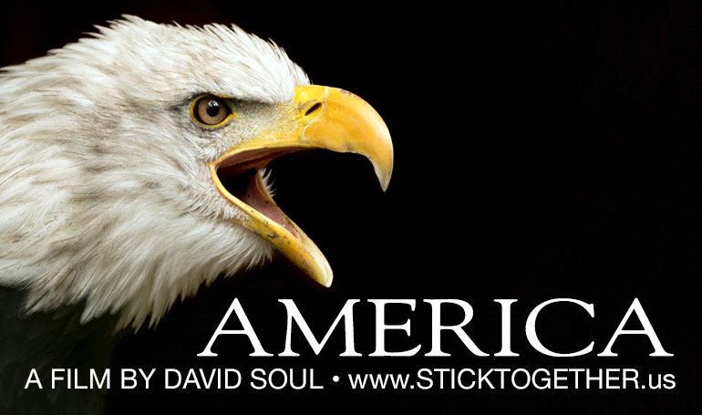 eagle-america-twitter
