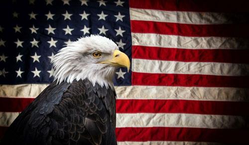 America by David Soul